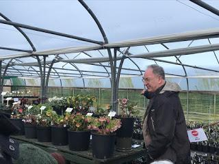 A visit to Ashwood Nurseries to enjoy the hellebores