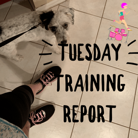 Tuesday Training (and Life) Report