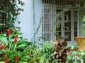 Living Abroad: Madame Expat Gardener