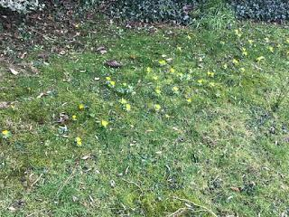 Is Spring about to sprung?