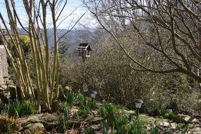 Meadowland -- An Appreciation