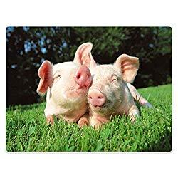 Image: YISUMEI 60X80 inches Blanket Comfort Warmth Soft Plush Throw for Couch Lovely Pig Grass