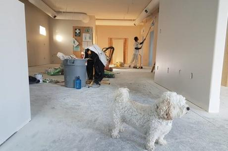 Best Home Improvement tips every Homeowner should follow!