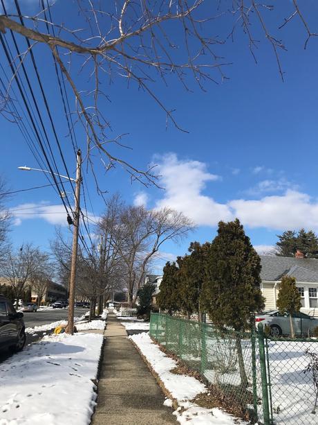 Yesterday's Snow in Farmingdale