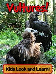 Image: Vultures! Learn About Vultures and Enjoy Colorful Pictures - Look and Learn! (50+ Photos of Vultures) | Kindle Edition | by Becky Wolff (Author). Publication Date: July 19, 2012