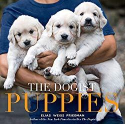 Image: The Dogist Puppies | Hardcover: 302 pages | by Elias Weiss Friedman (Author). Publisher: Artisan (September 19, 2017)