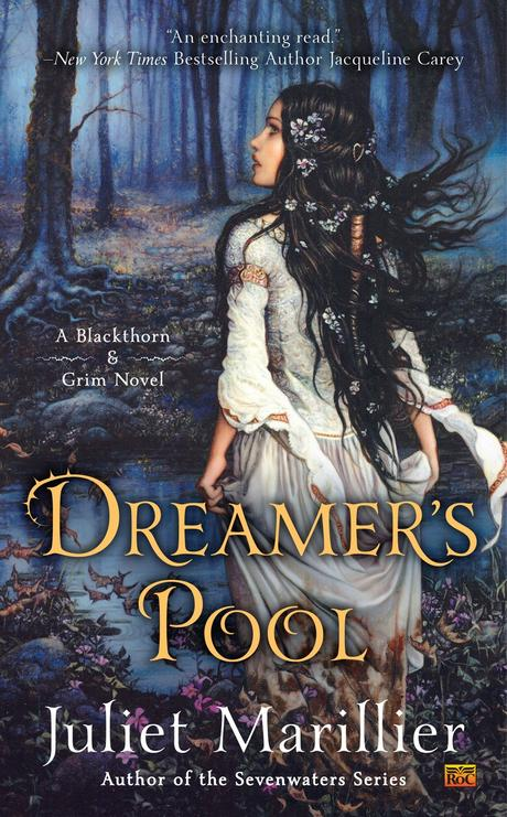 Image result for Dreamer's pool