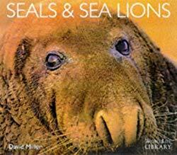 Image: Seals and Sea Lions (WorldLife Library) | Paperback: 72 pages | by David-Miller (Author). Publisher: Colin Baxter Photography Ltd (1998)