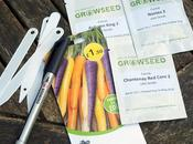 Sowing Carrot Seeds