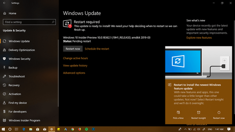 Windows Insider Preview 10.0.18362.1 (19H1_RELEASE)