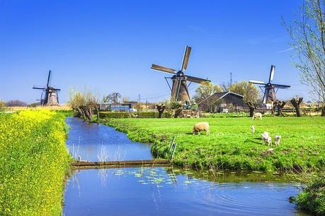 Ultimate Guide to Things to do in Rotterdam with Kids