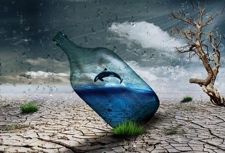 desert-bottle-dolphin-wind-art