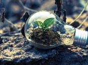 Ways Make Eco-friendly Business Going Green