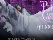 Purple Castle Quinn Slate