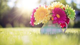 Spring - Hello Sunshine