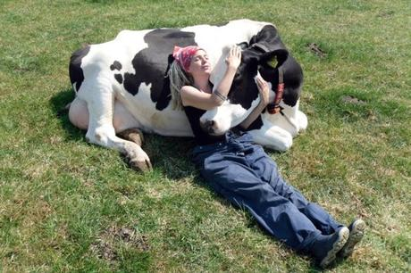 Cow Cuddling Is The New Wellness Trend Now And It Costs $300 For A 90-Minute Session