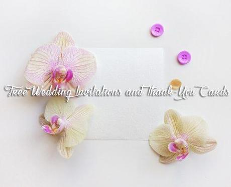 wedding freebies free wedding invitations and thank you cards