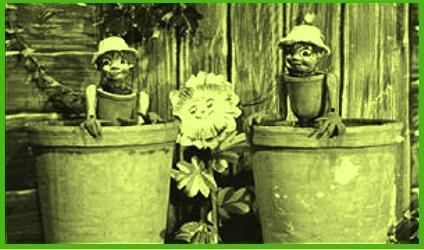 Down Among The Flowerpots