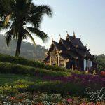 Royal Flora & The Night Safari – Chiang Mai – Day 3