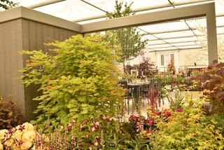 RHS Chelsea 2019 - some highlights