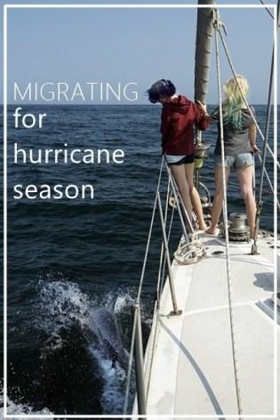 Migrating for hurricane season in Mexico