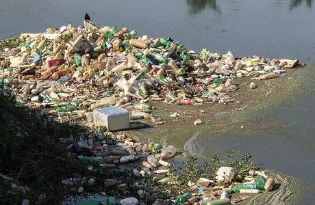 trash-river-pines-rubble-pollution