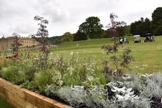RHS Chatsworth Flower Show 2019 - plant buying heaven