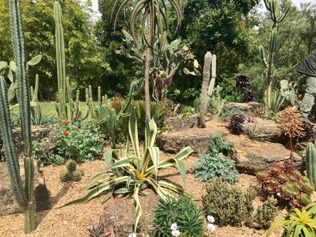 The Cotswold Wildlife Park and Gardens – a Rare Treat