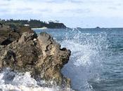 ARTmonday: Hamilton Princess, Bermuda