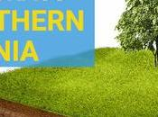 Choosing Best Grass Southern California