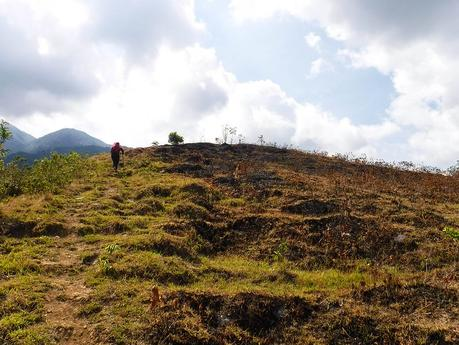 Readying a hillside for plowing