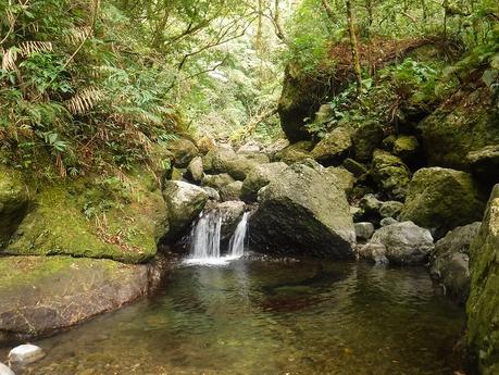 Water source at Bantang River