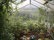 Pick Perfect Greenhouse