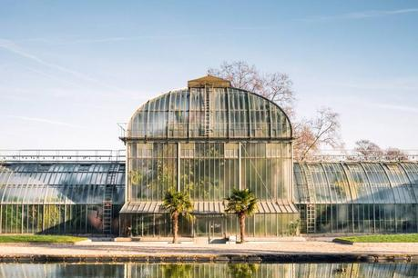 How to Pick the Perfect Greenhouse
