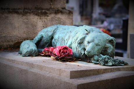 3 Tips to Help Your Child Deal With The Death of a Pet