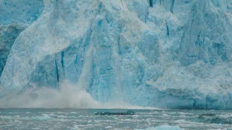 When Visiting Alaska, Do Not Skip the Kenai Fjords Tour