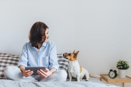 5 Tips for Taking Care of a Dog in a Small Apartment