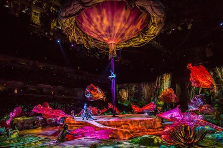 Fitness On Toast - Cirque Du Soleil - Review - BTS behind the scenes training routine regime diet artists Toruk Finland Avatar First Flight-15