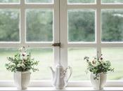 Crystal Clear: Tips Keeping Your Home Windows Clean