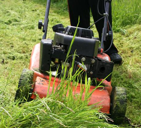 Electric Vs Gas Lawn Mower – Which Is Best?