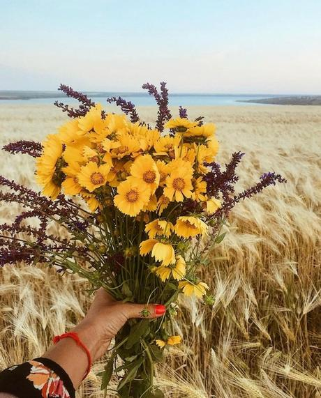 Pick the perfect flower for your partner