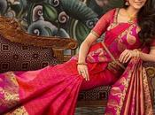 Useful Tips Preserving Your Wedding Sarees