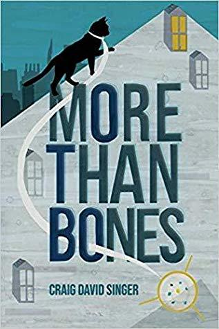 More Than Bones by Craig David Singer- Feature and Review
