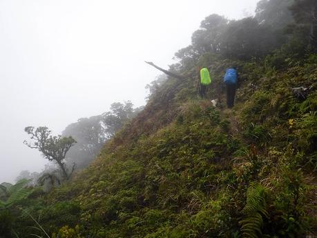 Continuing the trek