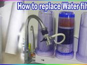 Replace Your Stages Alkaline Water Filter Home?