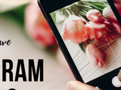 Must Have Instagram Tools Boost Your Business 2019