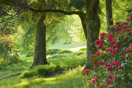 Top 5 UK gardens and landscapes to visit from the big screen
