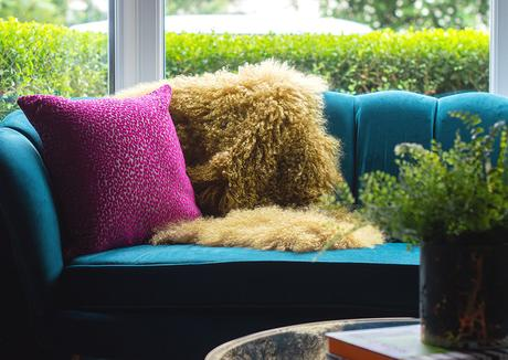 Pink leopard print cushion in Cheetah fabric by Mathew Williamson for Osborne & Little