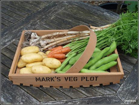 Mid-July harvests