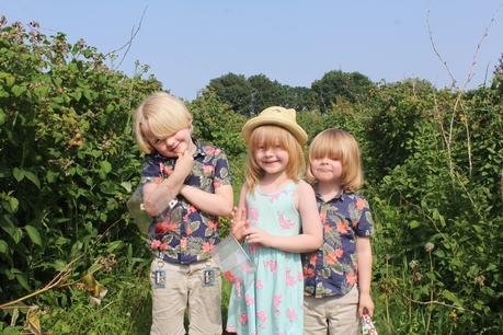 Siblings July Home Year